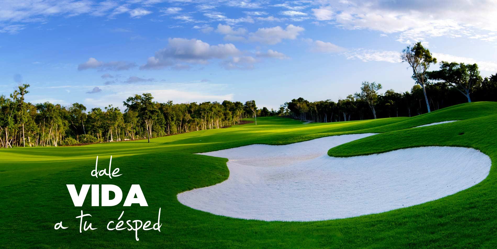 faldon golf